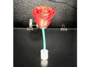 Rose, stem and a little flowervase