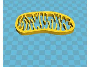 The mitochondrion (plural mitochondria)