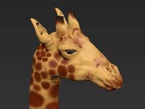 giraffe zbrush