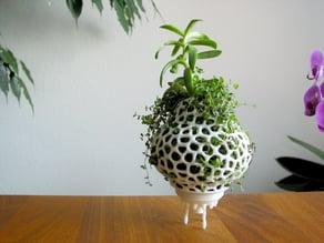 Plant Space Rocket