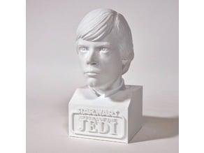 Jedi Luke Skywalker Bust (with base)