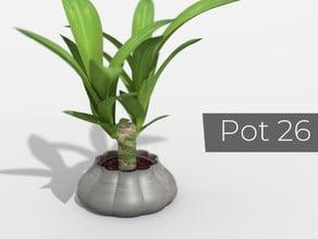 Pot_26