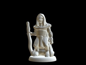 Priest of Mordiggian (18mm scale)