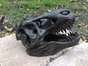 T-Rex Skull Wood Grain