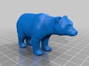 熊(Bear)3Dデータ