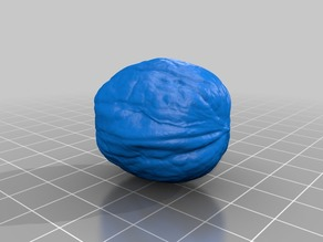 Walnut - 3D Scan