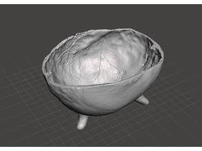 Human Skull Bowl Replica