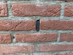 No Bees/Wasp in wall