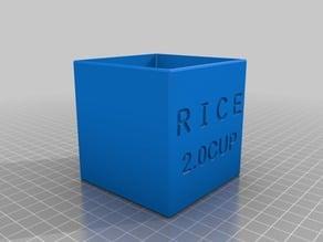 RAIC 2Cup