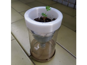 Self-Watering Planter - Reuse Peanut Butter Jar