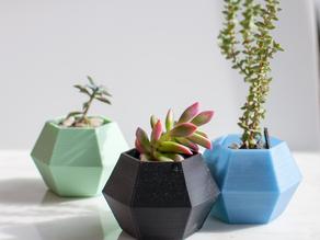 Hexagon Succulent Planter