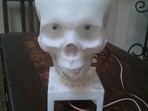 Robot Skull (Like Geoff off Craig Ferguson)