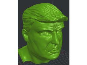 Trump bust large