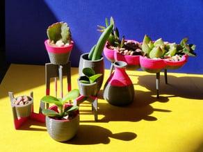 mini planter set