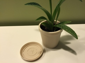 Plant pot and saucer with biofila linen