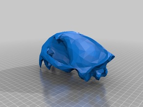 Low Poly Cougar Skull