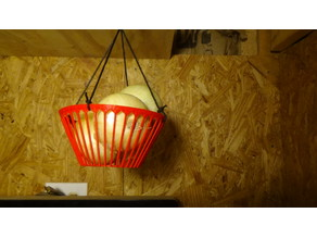 Potato And Onion Basket