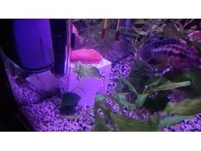 fish tank hideout