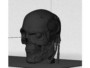 T-1000 Human Skull Hybrid - TT