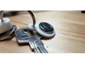 Dallas (iButton) key (domofon)