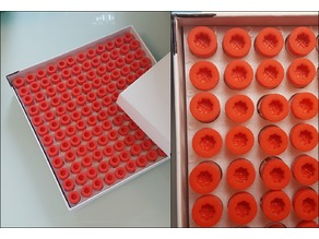 Plasmid tubes holder for storage box