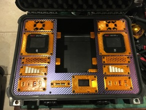 Dual ISDT Charge Case