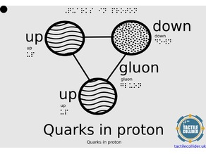 Tactile Proton with Quarks