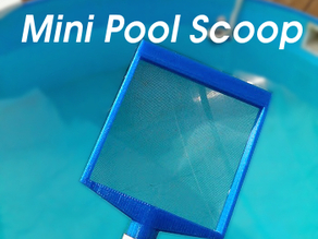 Mini Pool Scoop