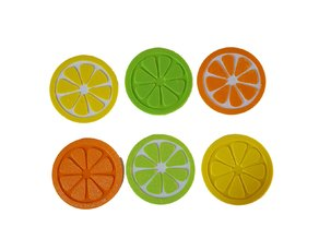 Citrus Fruit Slice Coaster