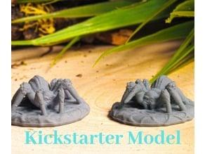 Supportless Spider - Kickstarter Test Model