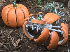 Halloween Pumpkin Spider Transformer