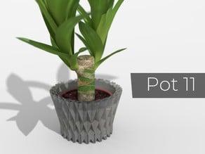 Pot_11