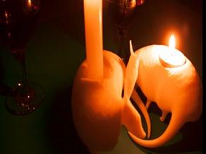 Armadillo Candle