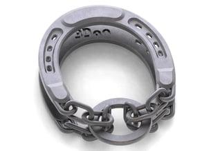 Chained Horseshoe Puzzle