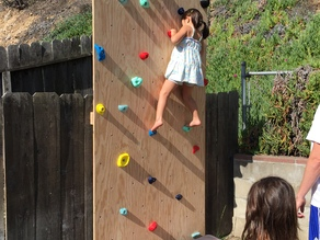 Kid Rock Wall Holds