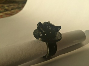 Rocket Raccoon ring for Eliza