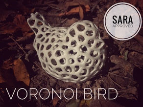 Voronoi Bird