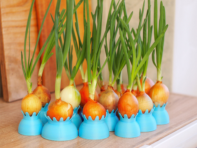Onion pots by 3domas thingiverse for Indoor gardening onions