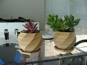 Low Poly Planter With Drain Tray