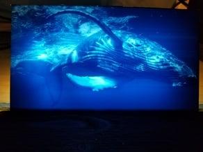 Humpback Whale Lithophane