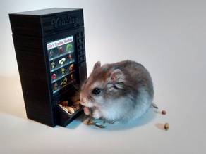 Ollie's Vending Machine (Hamster feeder)