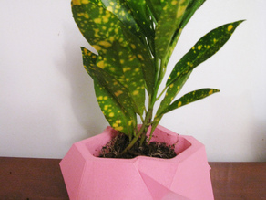Crystalline Plant Pot