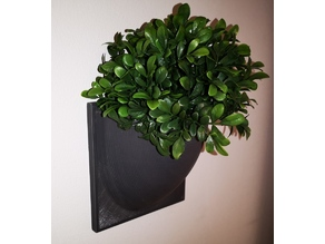 Vertical Wall Mounted Plant or things holder