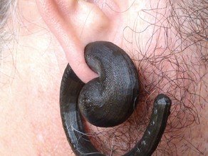 Koru Ear Spiral