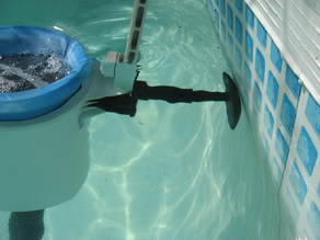 Intex pool Skimmer Stabilizer