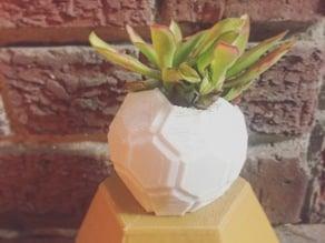 Planter V7 - An Odd Planter