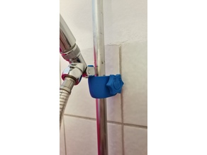 Shower Holder with peg
