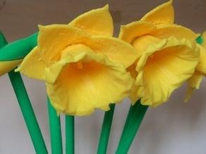 Digital Daffodils