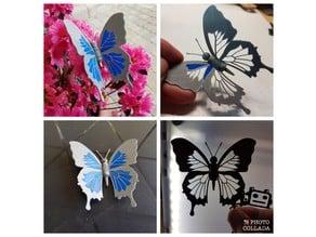 Blue Butterfly - Papillon bleu