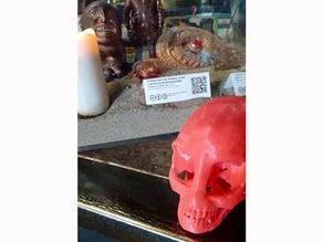 Alien Skull - (Crystal Skull Inspired)